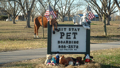 Pet Boarding Perry Ga